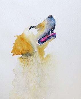 Akvarellkurs med Daniel Luther