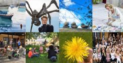 Nyhetsbrev Kulturfyren Sommar 2020
