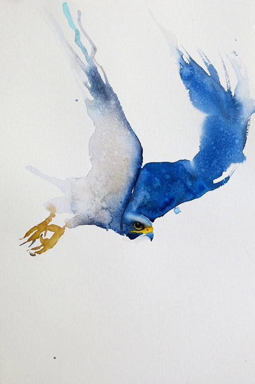 Akvarellkurs med Daniel Luther - Gestalta fåglar